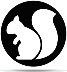 Gobo Animal Squirrel
