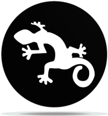 Gobo Animal Lizard